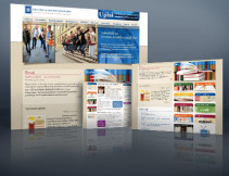 hks-web-display