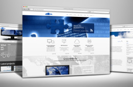 Moogilu company website